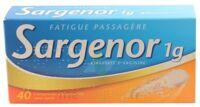 Sargenor Sans Sucre 1 G, Comprimé Effervescent 2t/20 (40) à Marseille