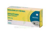 PARACETAMOL TEVA CONSEIL 500 mg, comprimé à Marseille
