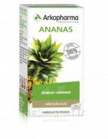 Arkogélules Ananas Gélules Fl/150
