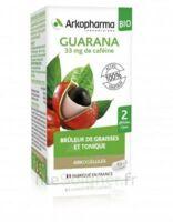 Arkogélules Guarana Bio Gélules Fl/45 à Marseille