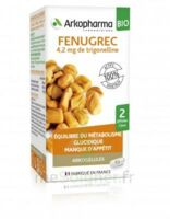 Arkogélules Fenugrec Bio Gélules Fl/40 à Marseille