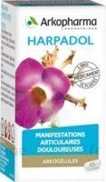 ARKOGELULES HARPAGOPHYTON, 150 gélules à Marseille