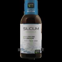 Santé Verte Silicium Solution buvable Fl/500ml à Marseille