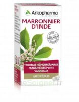 Arkogelules Marronnier D'inde Gélules Fl/45 à Marseille