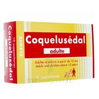COQUELUSEDAL ADULTES, suppositoire à Marseille