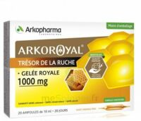Arkoroyal Gelée royale 1000 mg Solution buvable 20 Ampoules/10ml à Marseille