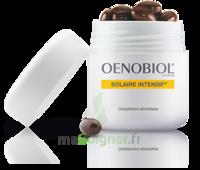 Oenobiol Solaire Intensif Caps Peau Normale Pot/30 à Marseille