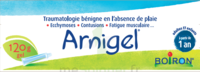 Boiron Arnigel Gel T/120g à Marseille
