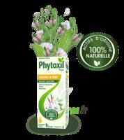 Phytoxil Toux Sans Sucre Sirop Adulte Enfant +2 Ans Fl/120ml à Marseille